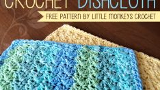 DISHCLOTH (FREE PATTERN)
