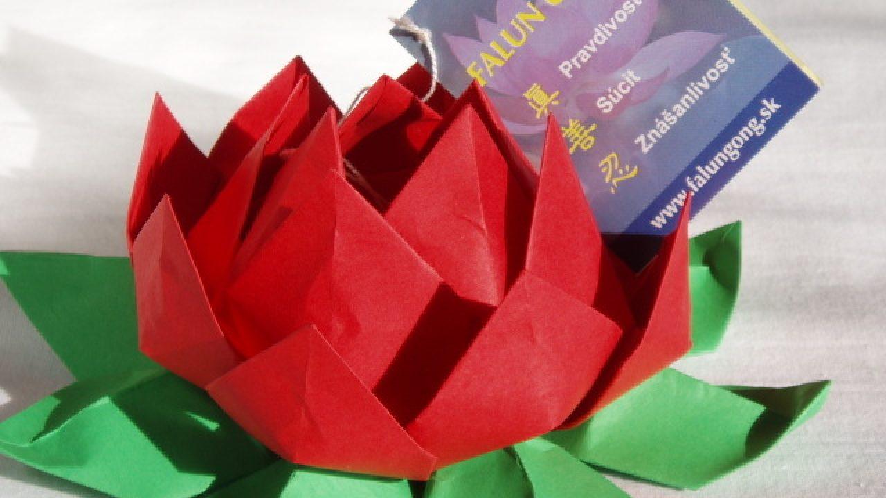 DIY Origami Lotus Flower | 720x1280