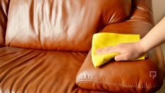 Cleaning your leather sofa