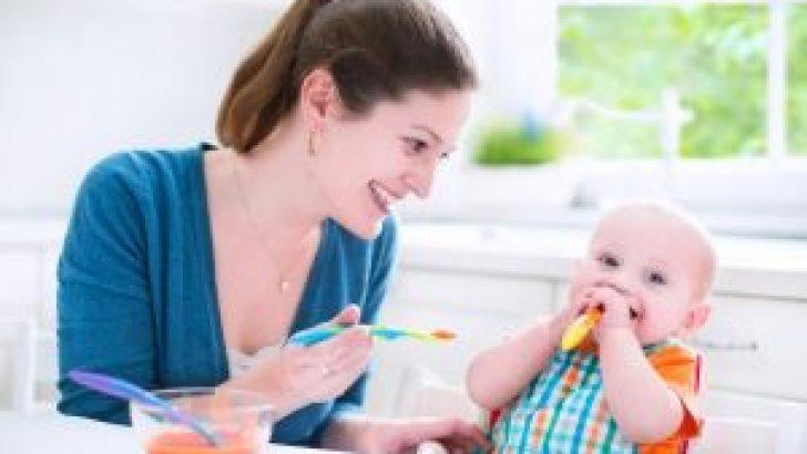 Salubrious Baby Food Description