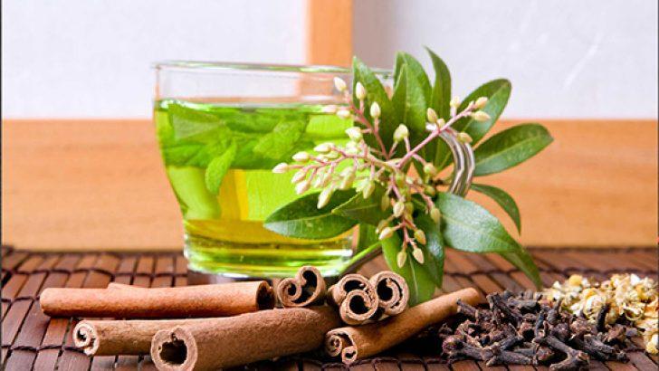 Herbal Teas for Children