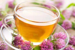 herbal-teas-for-children-4
