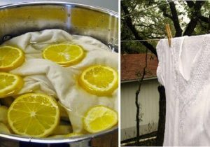the-natural-whiteness-of-the-laundry-with-lemon-4