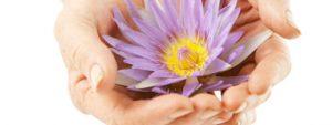 flower-care-2