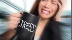 Stress Effects on Skin