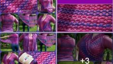 Knitted shawl pattern free