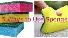 15 Ways to Use Sponges